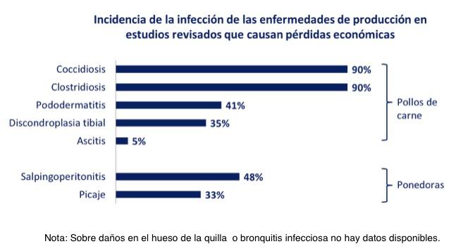 incidencia-infeccion-enfermedades-produccion