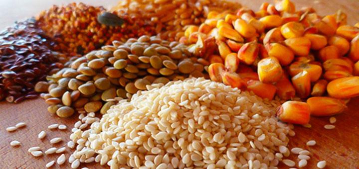 deficiencia-vitamina-E-aves-de-corral-medidas-alimentacion.jpg