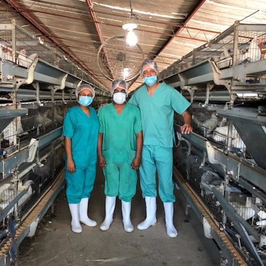personal-veterinario-aves-corral-covid.jpg